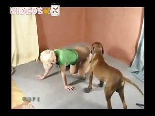 Amateur Dog porn