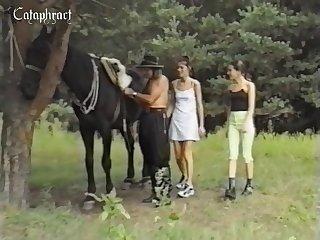 Horse dick porn Blowjob