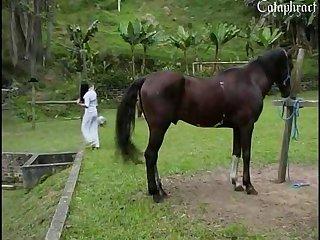 horse porn Fucked xxx